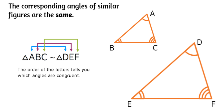 The corresponding angles of similar figures are the same. The order of the letters in the similarity statement tells you which angles are congruent.